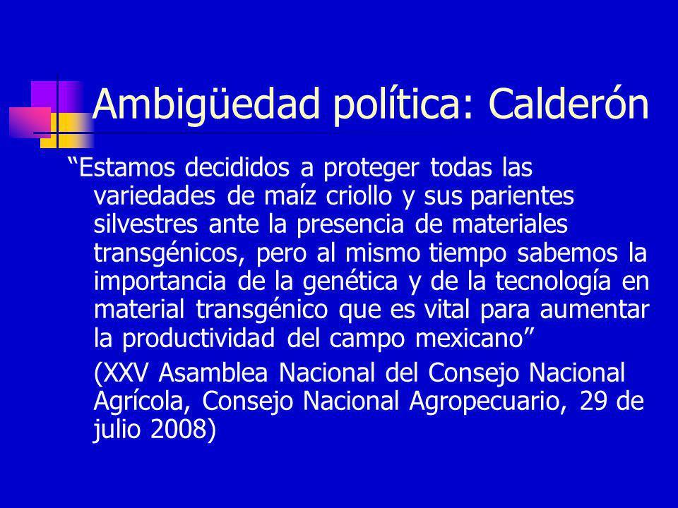 Ambigüedad política: Calderón