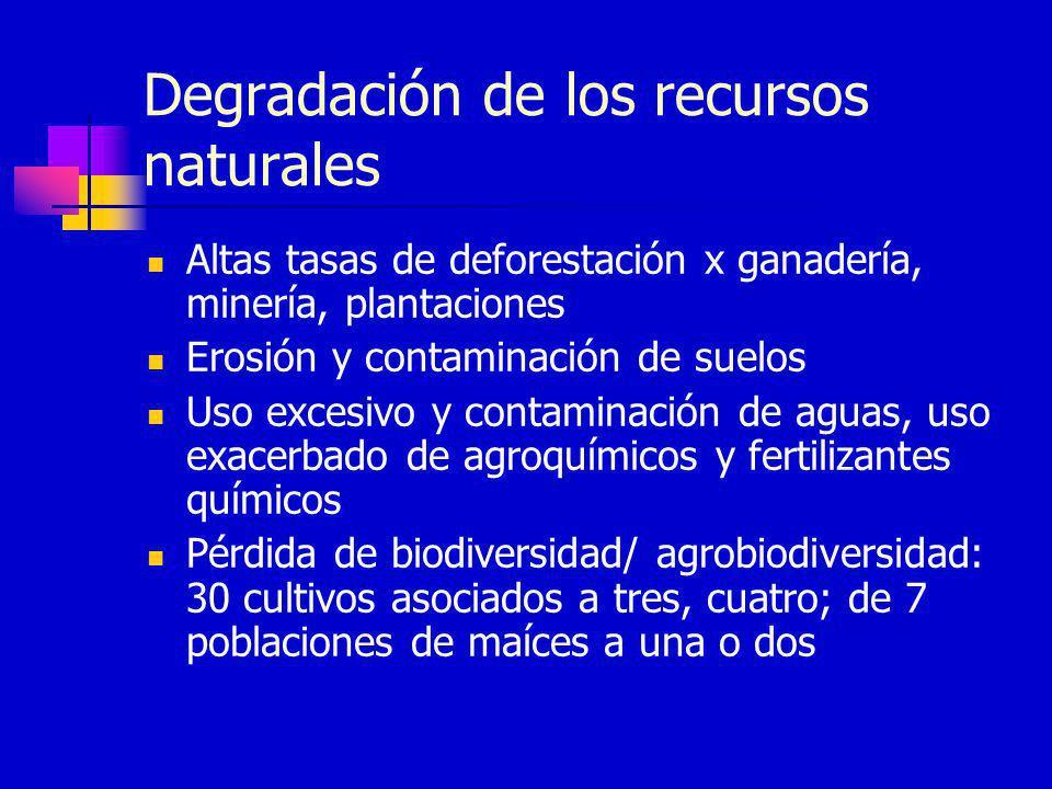 Degradación de los recursos naturales