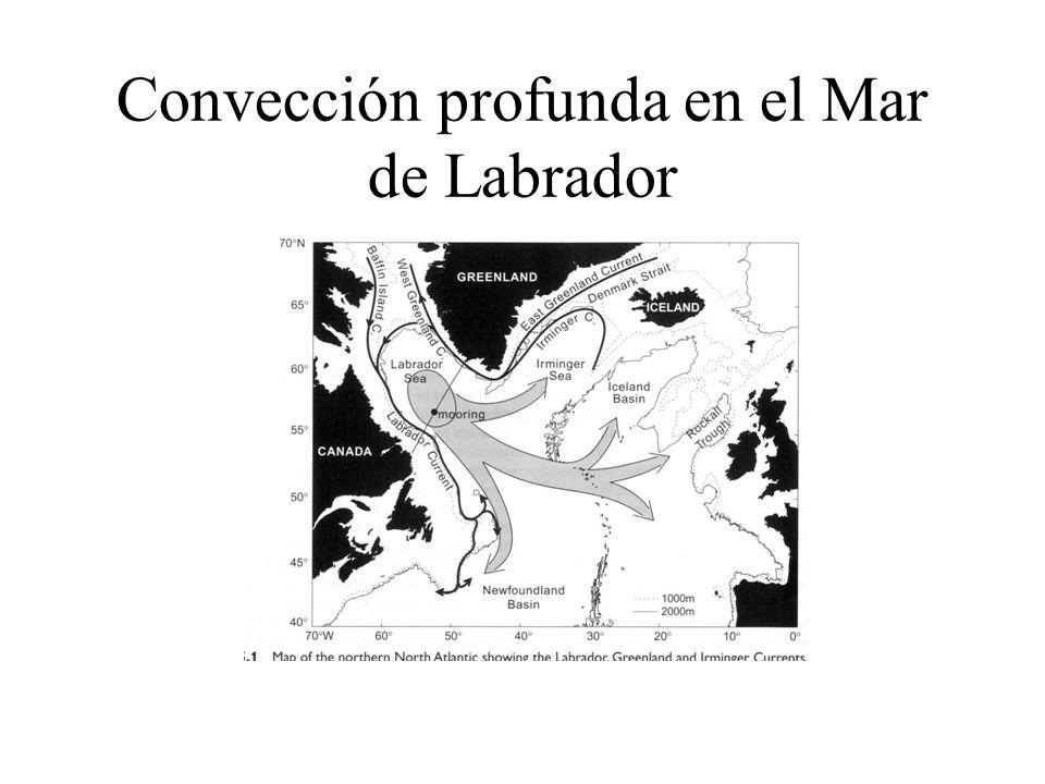 Convección profunda en el Mar de Labrador