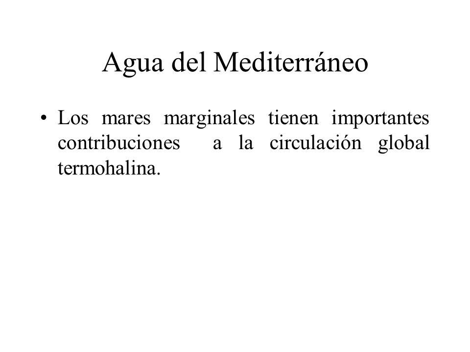 Agua del Mediterráneo Los mares marginales tienen importantes contribuciones a la circulación global termohalina.