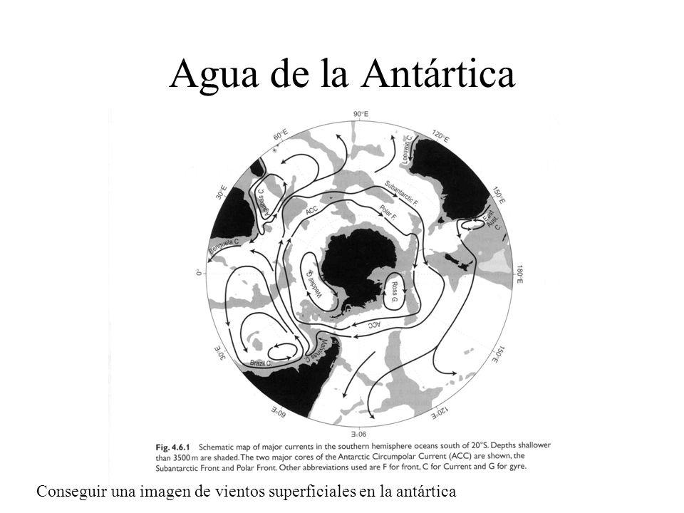 Agua de la Antártica Conseguir una imagen de vientos superficiales en la antártica