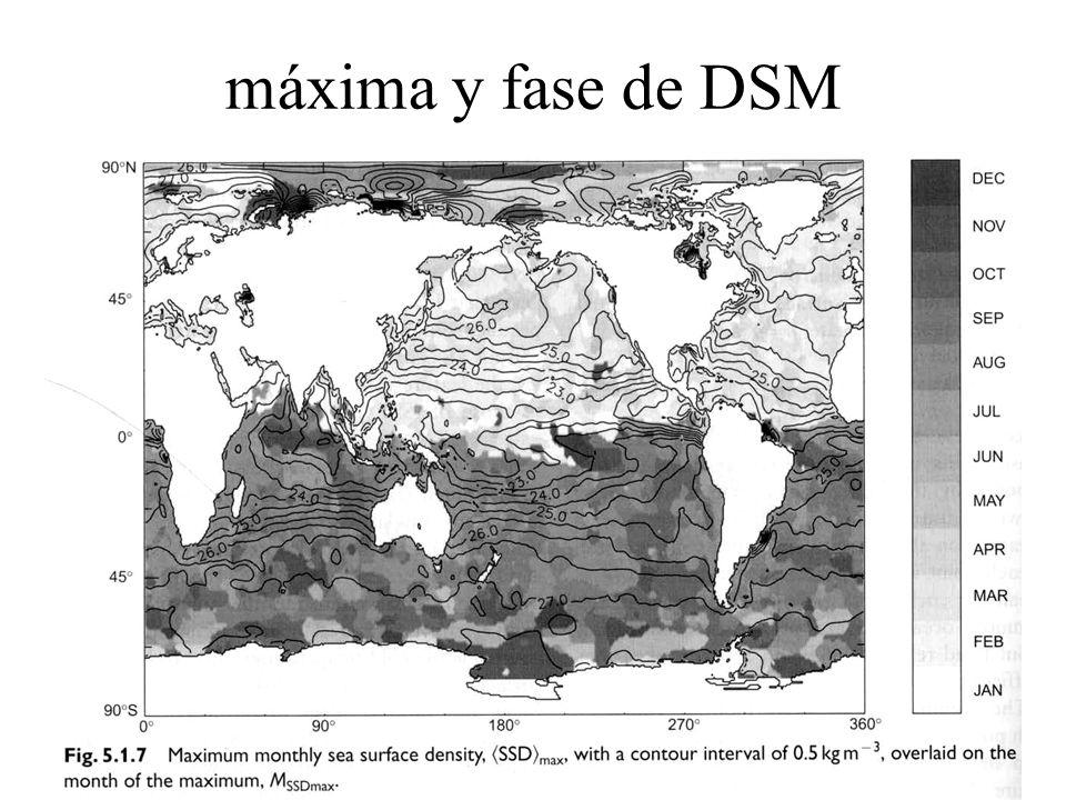 máxima y fase de DSM