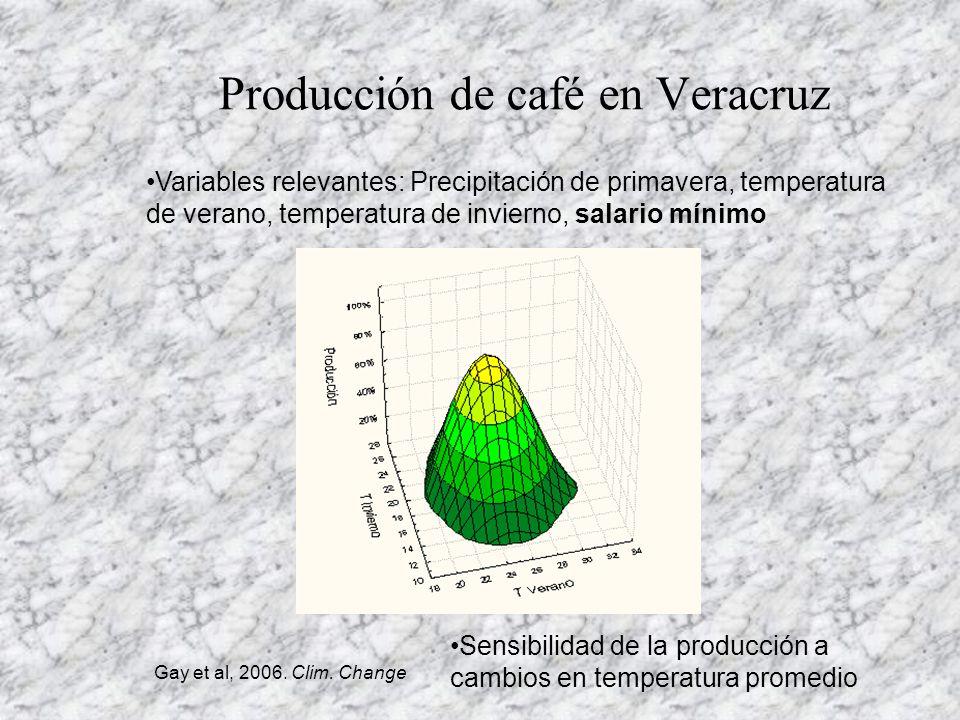 Producción de café en Veracruz
