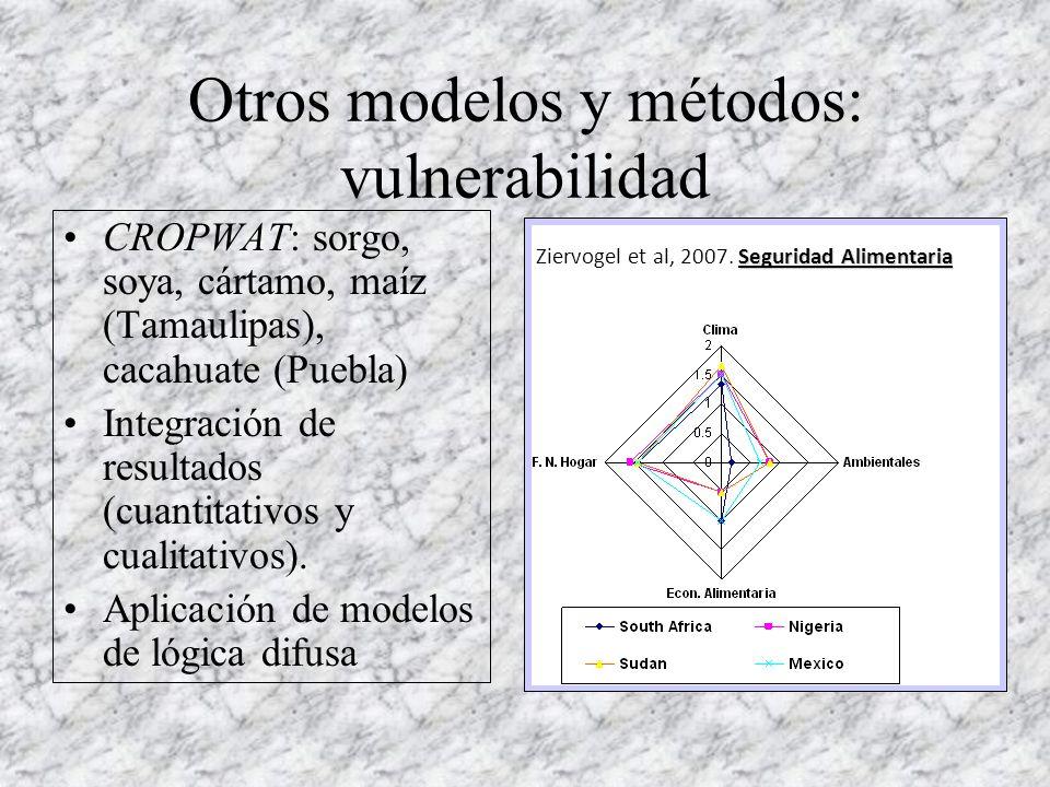 Otros modelos y métodos: vulnerabilidad