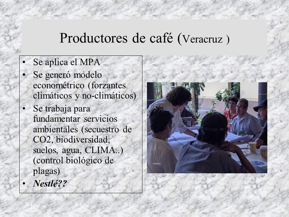 Productores de café (Veracruz )