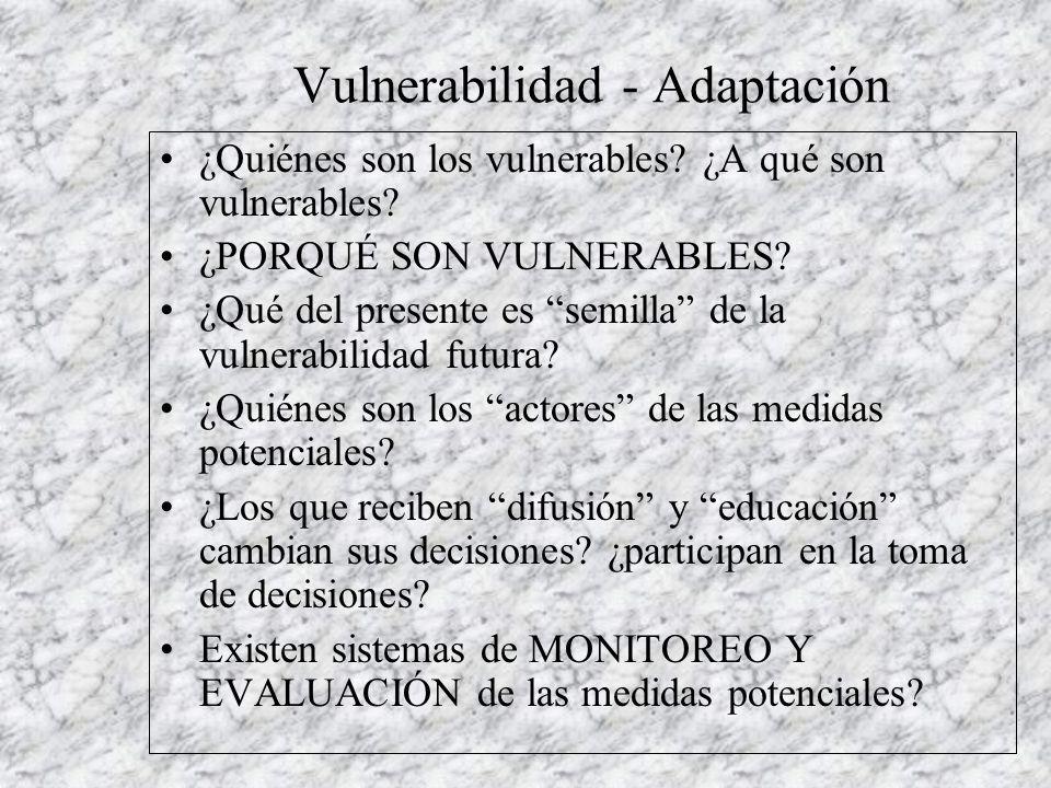 Vulnerabilidad - Adaptación