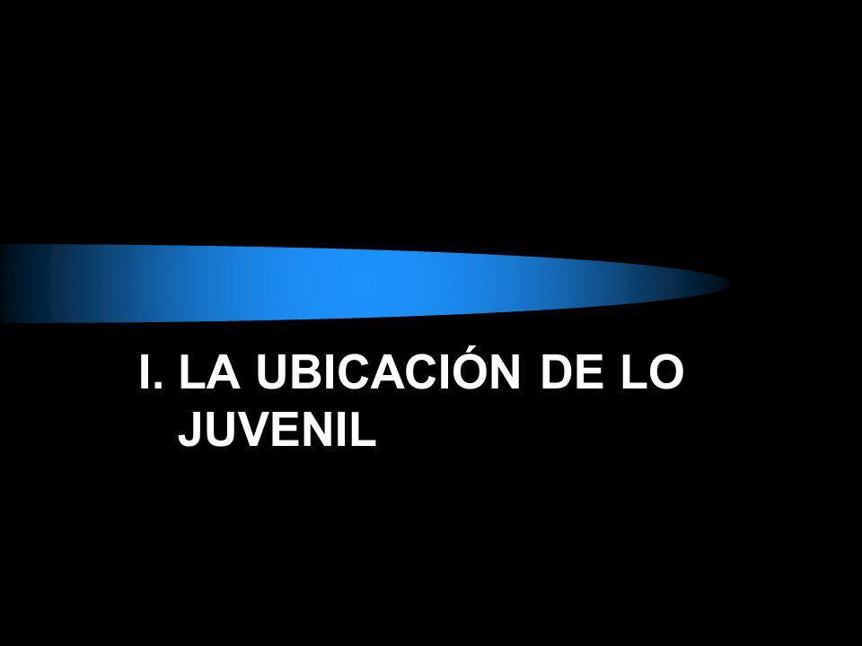 I. LA UBICACIÓN DE LO JUVENIL