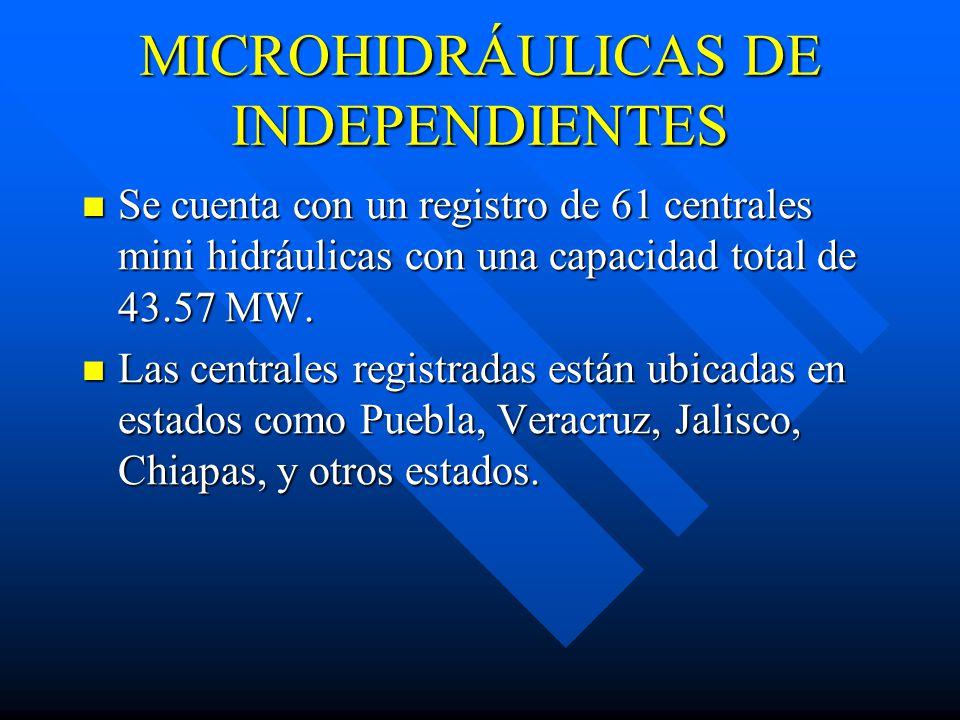 MICROHIDRÁULICAS DE INDEPENDIENTES
