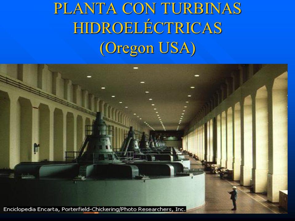 PLANTA CON TURBINAS HIDROELÉCTRICAS (Oregon USA)