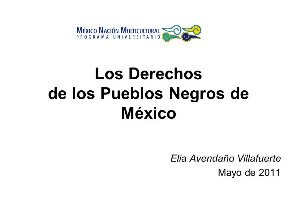 Los Derechos de los Pueblos Negros de México