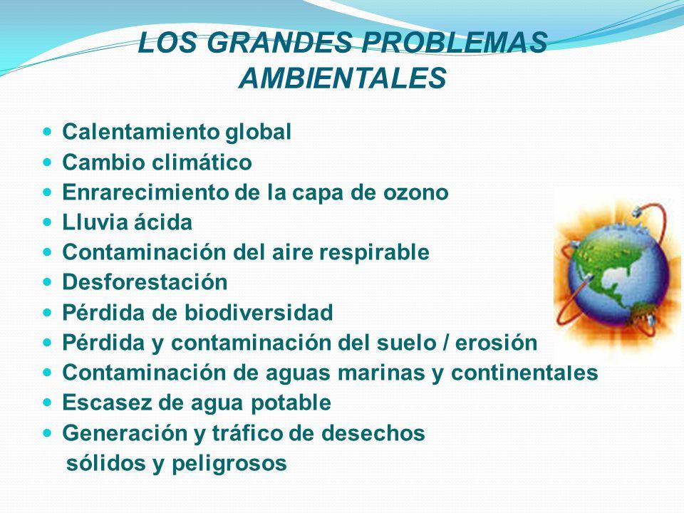 LOS GRANDES PROBLEMAS AMBIENTALES
