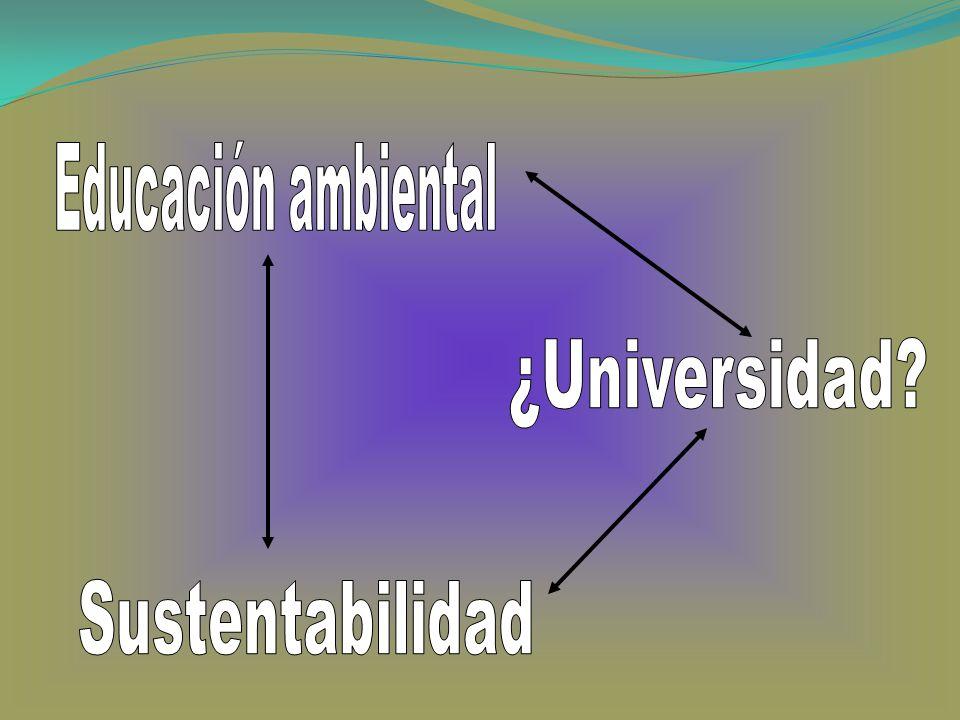 Educación ambiental ¿Universidad Sustentabilidad