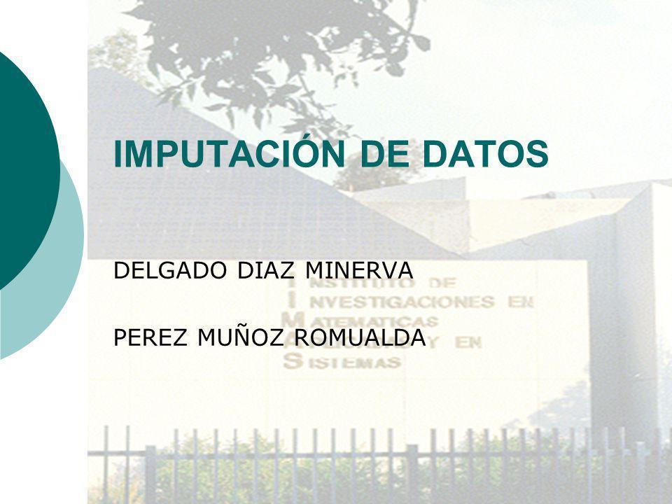 DELGADO DIAZ MINERVA PEREZ MUÑOZ ROMUALDA
