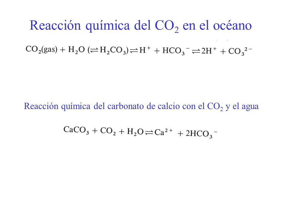 Reacción química del CO2 en el océano