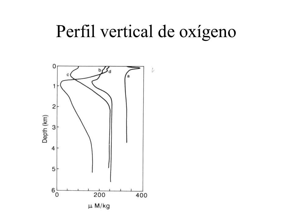 Perfil vertical de oxígeno