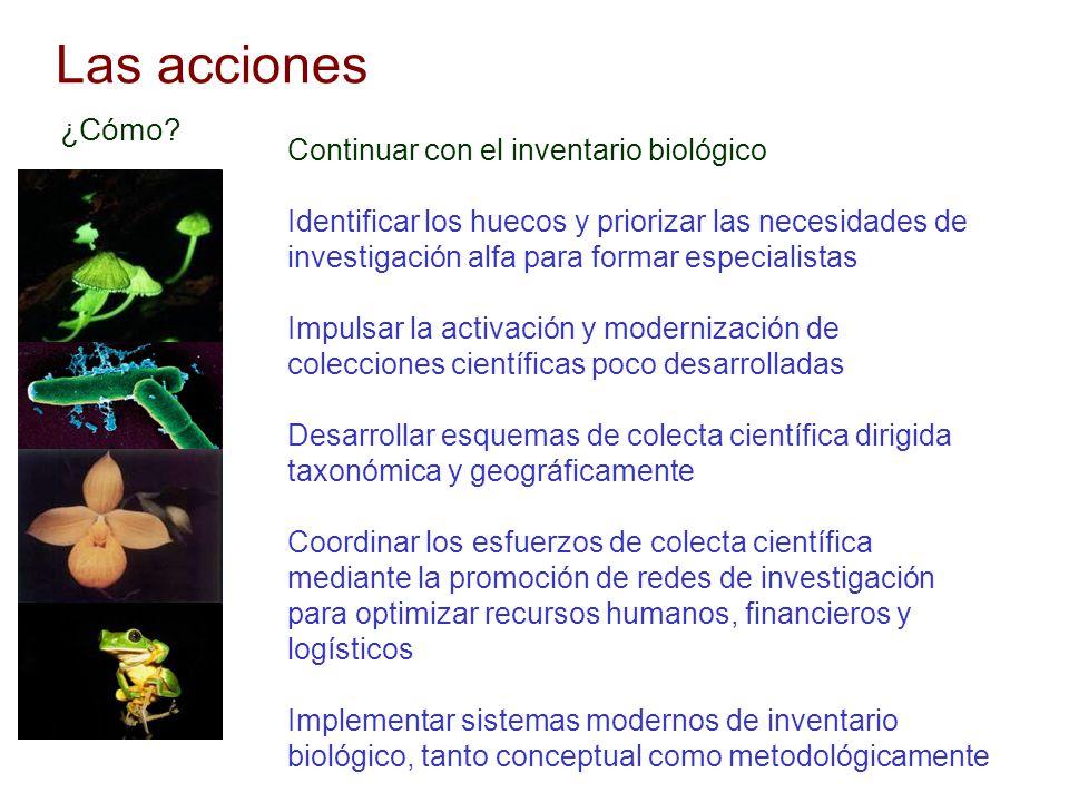 Las acciones ¿Cómo Continuar con el inventario biológico