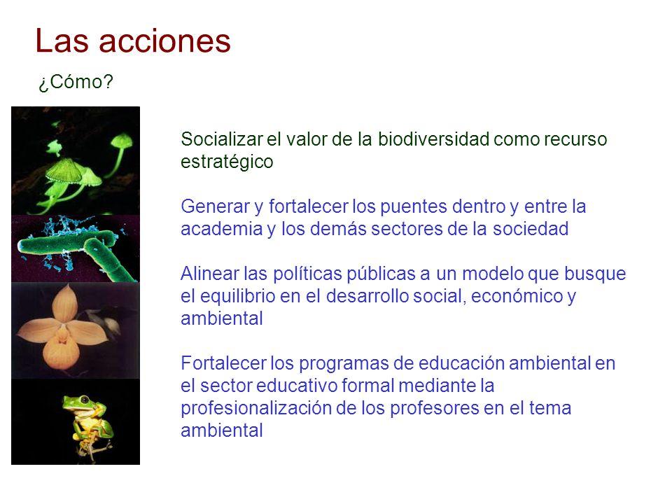 Las acciones ¿Cómo Socializar el valor de la biodiversidad como recurso estratégico.