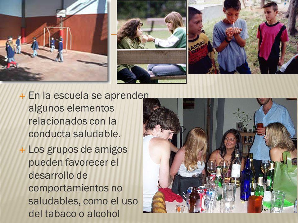 En la escuela se aprenden algunos elementos relacionados con la conducta saludable.