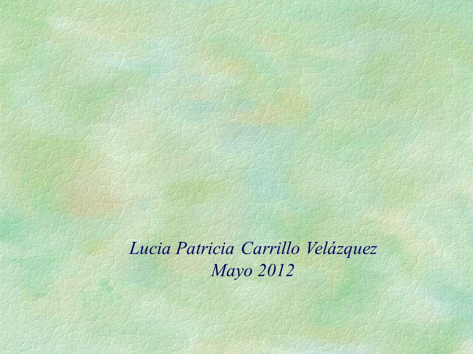 Lucia Patricia Carrillo Velázquez