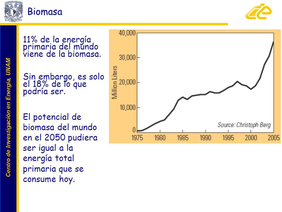 Biomasa 11% de la energía primaria del mundo viene de la biomasa.
