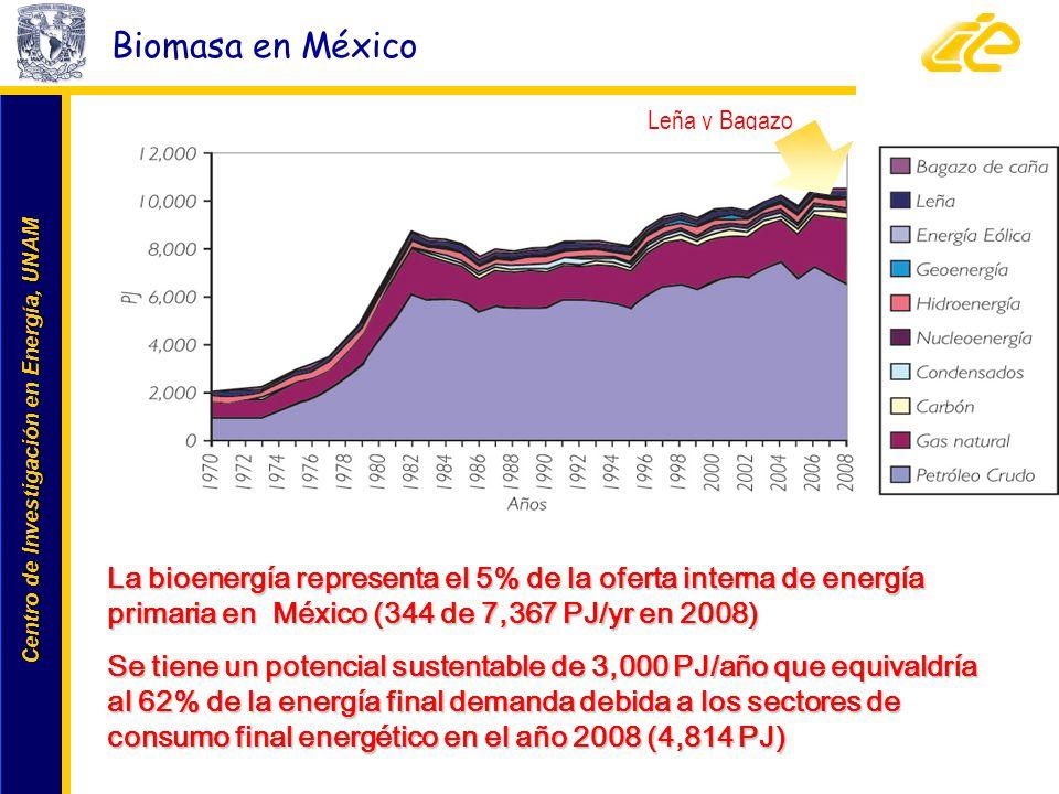 Biomasa en México Leña y Bagazo. La bioenergía representa el 5% de la oferta interna de energía primaria en México (344 de 7,367 PJ/yr en 2008)