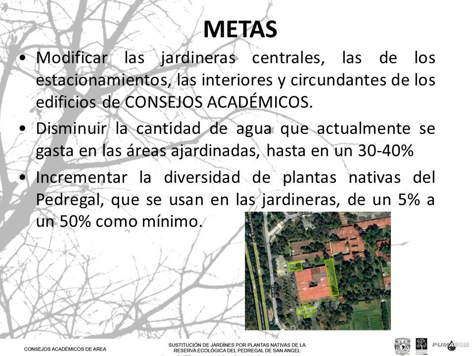METAS Modificar las jardineras centrales, las de los estacionamientos, las interiores y circundantes de los edificios de CONSEJOS ACADÉMICOS.