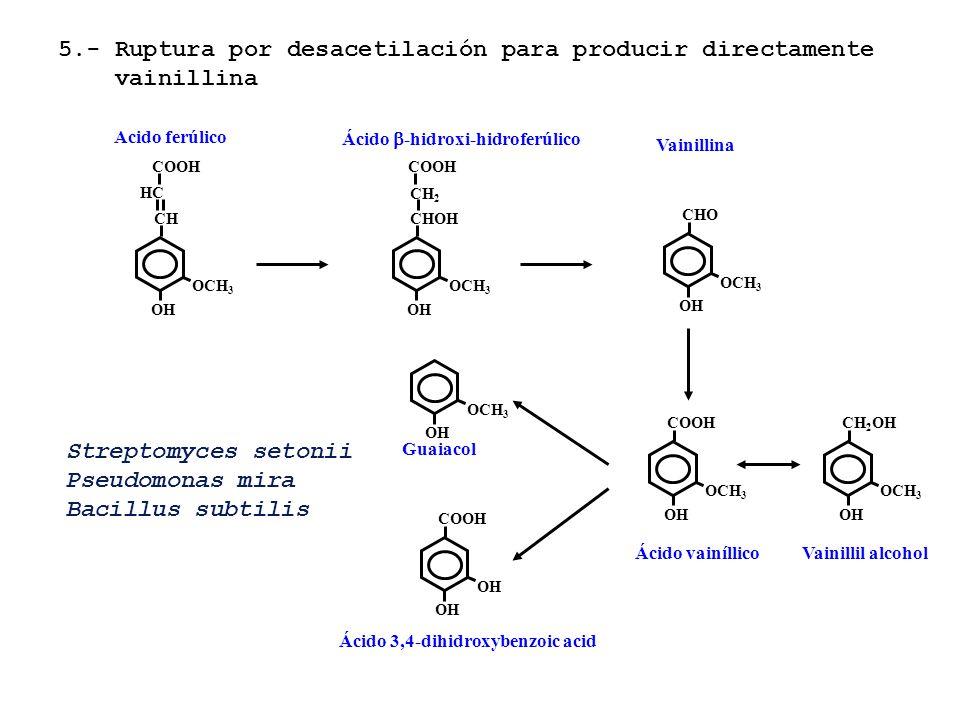 5.- Ruptura por desacetilación para producir directamente vainillina