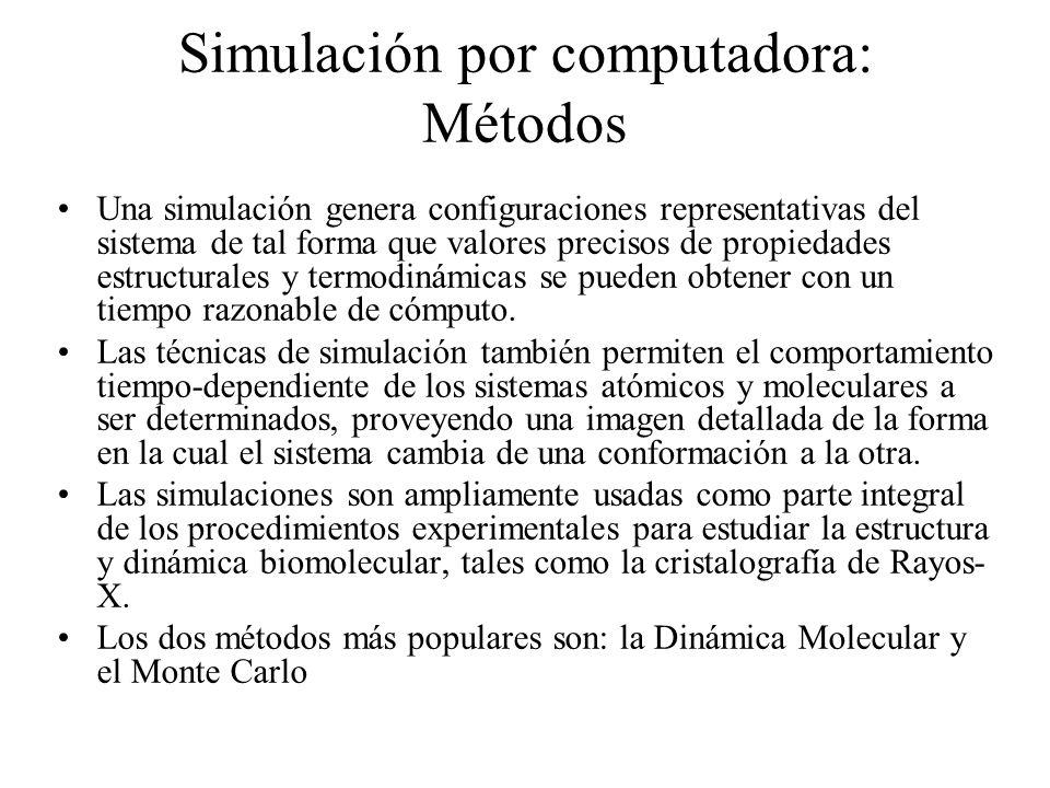 Simulación por computadora: Métodos