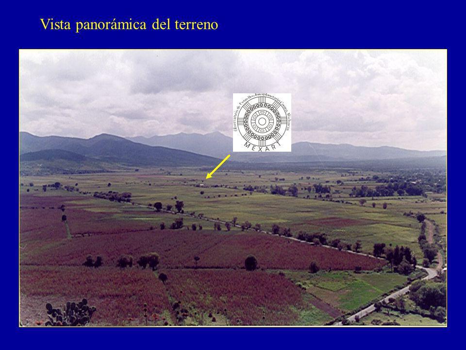 Vista panorámica del terreno