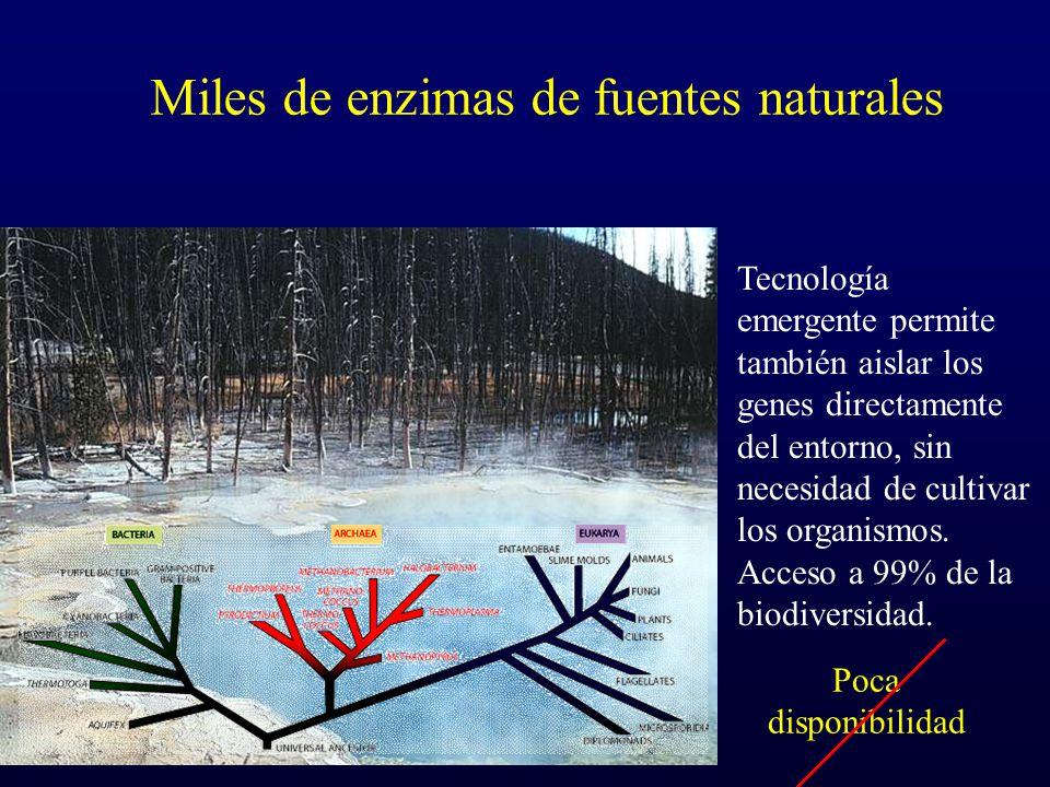 Miles de enzimas de fuentes naturales
