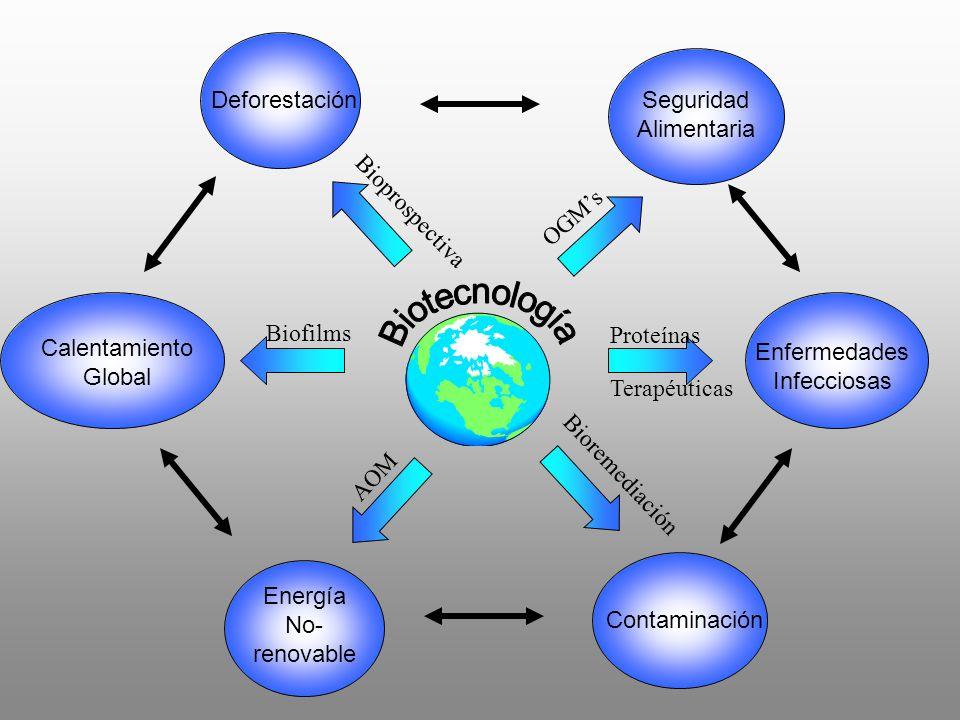 Biotecnología Deforestación Seguridad Alimentaria OGM's AOM