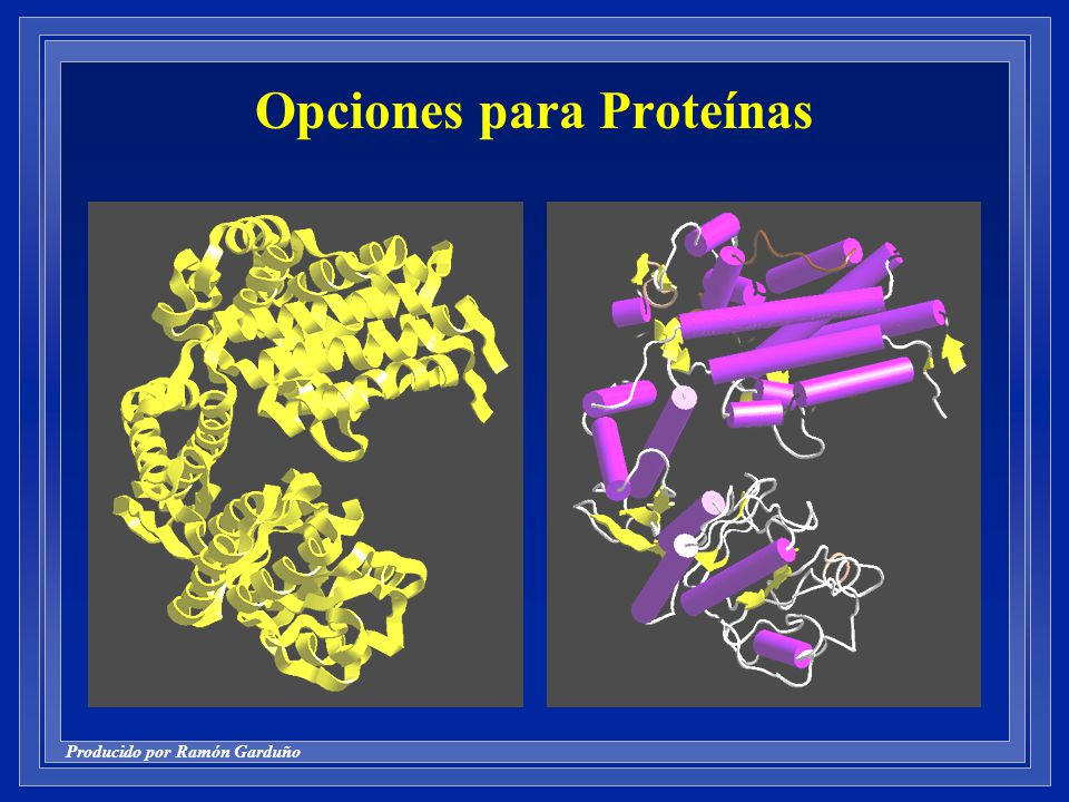 Opciones para Proteínas
