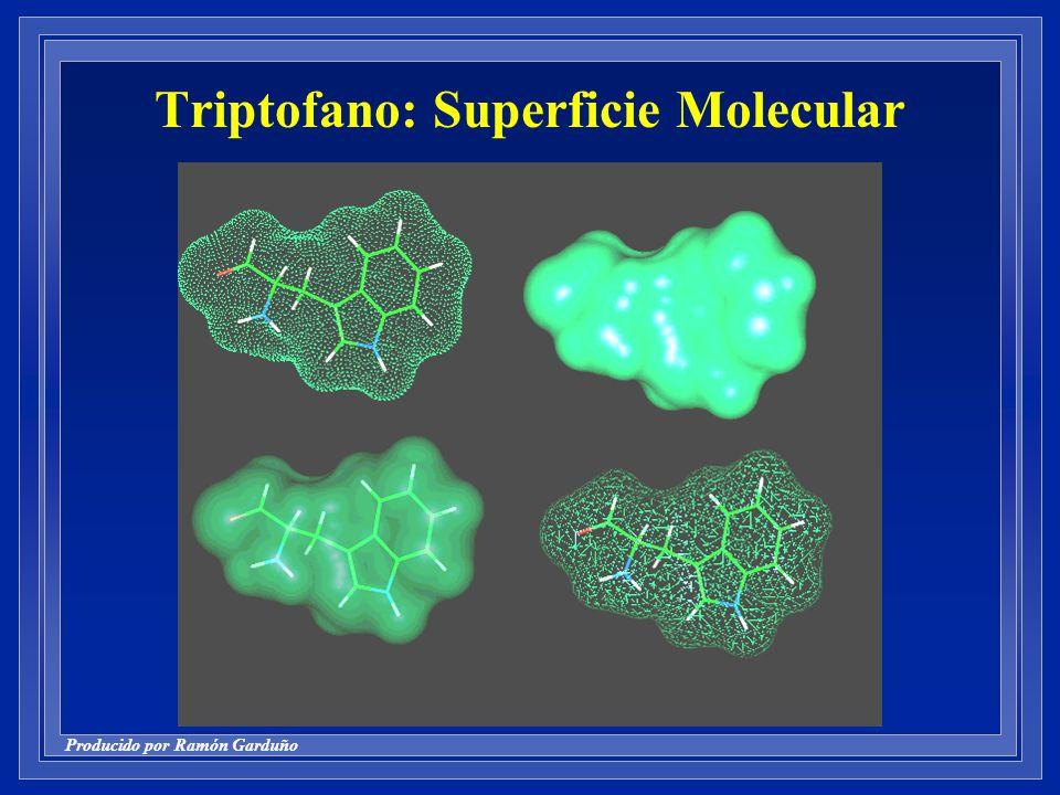 Triptofano: Superficie Molecular