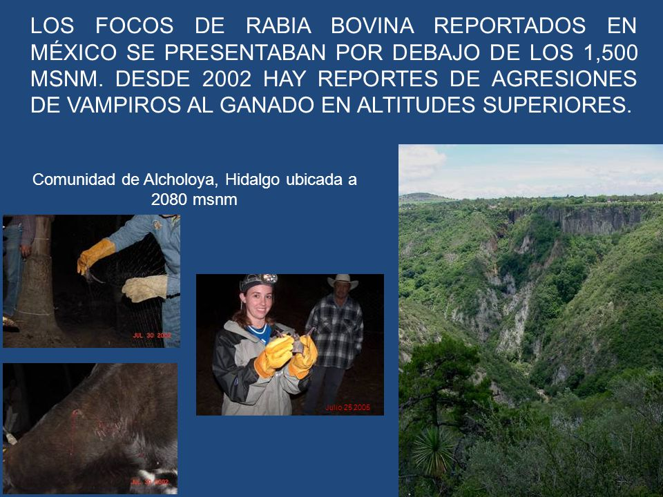 Comunidad de Alcholoya, Hidalgo ubicada a 2080 msnm