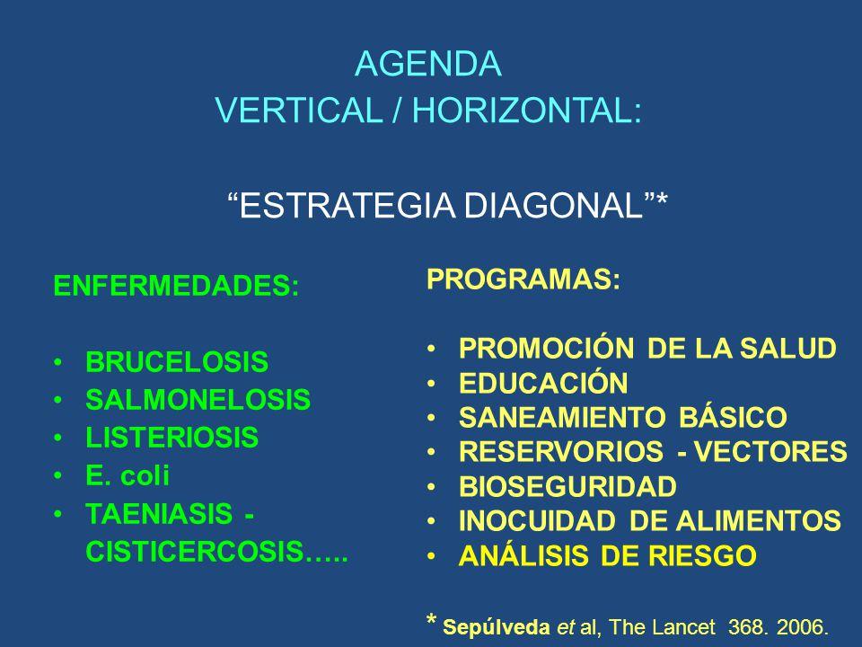 AGENDA VERTICAL / HORIZONTAL: ESTRATEGIA DIAGONAL *