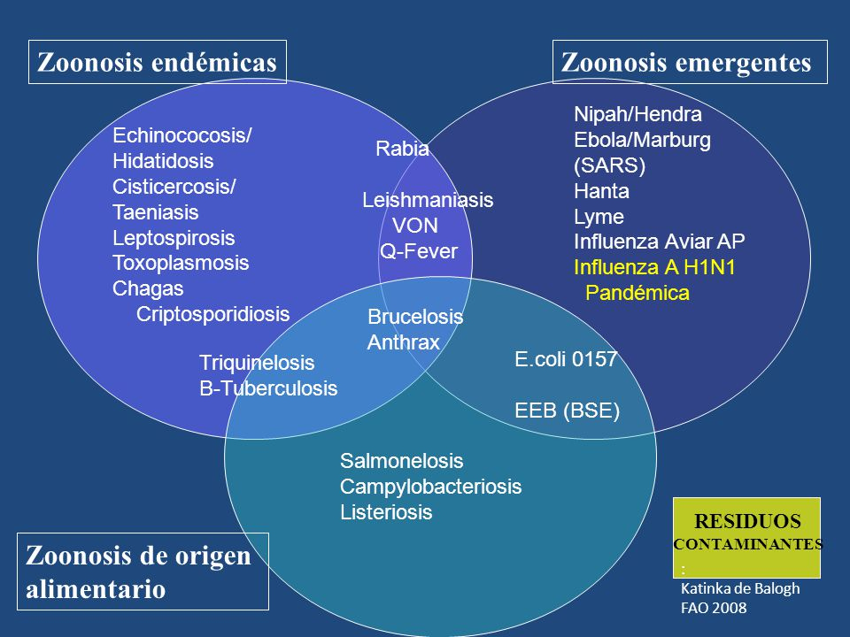 Zoonosis endémicas Zoonosis emergentes Zoonosis de origen alimentario