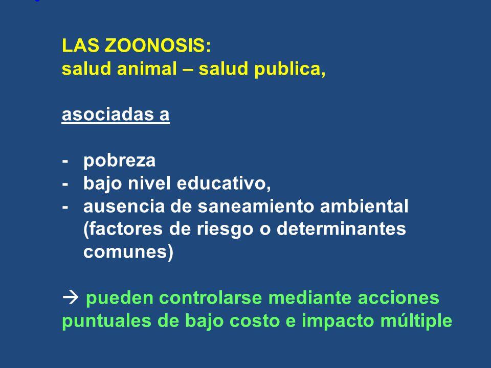 LAS ZOONOSIS: salud animal – salud publica, asociadas a -. pobreza -