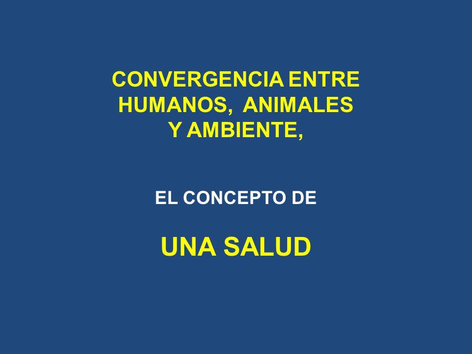 CONVERGENCIA ENTRE HUMANOS, ANIMALES Y AMBIENTE, EL CONCEPTO DE UNA SALUD