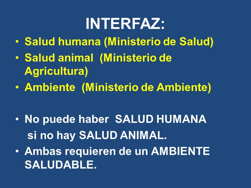 INTERFAZ: Salud humana (Ministerio de Salud)