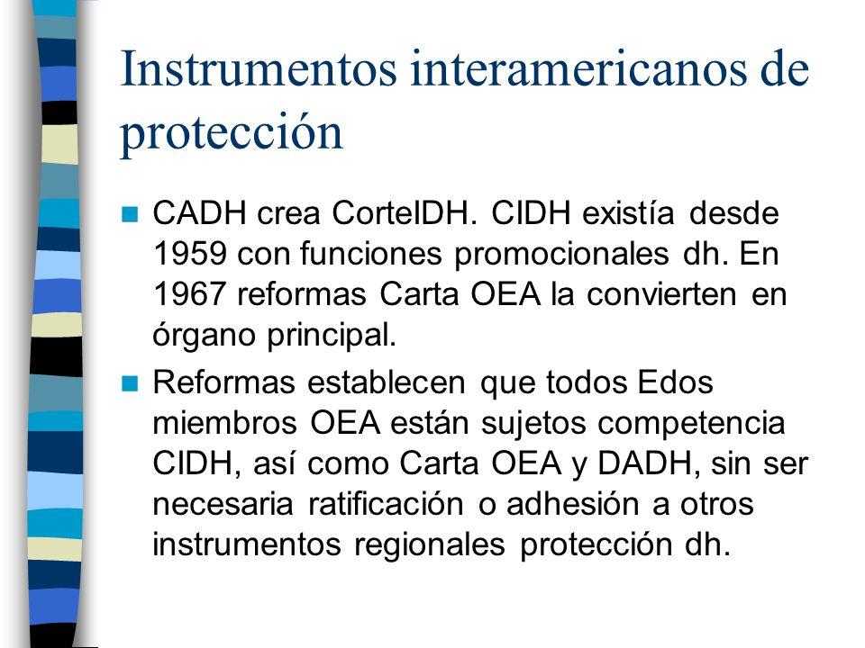 Instrumentos interamericanos de protección