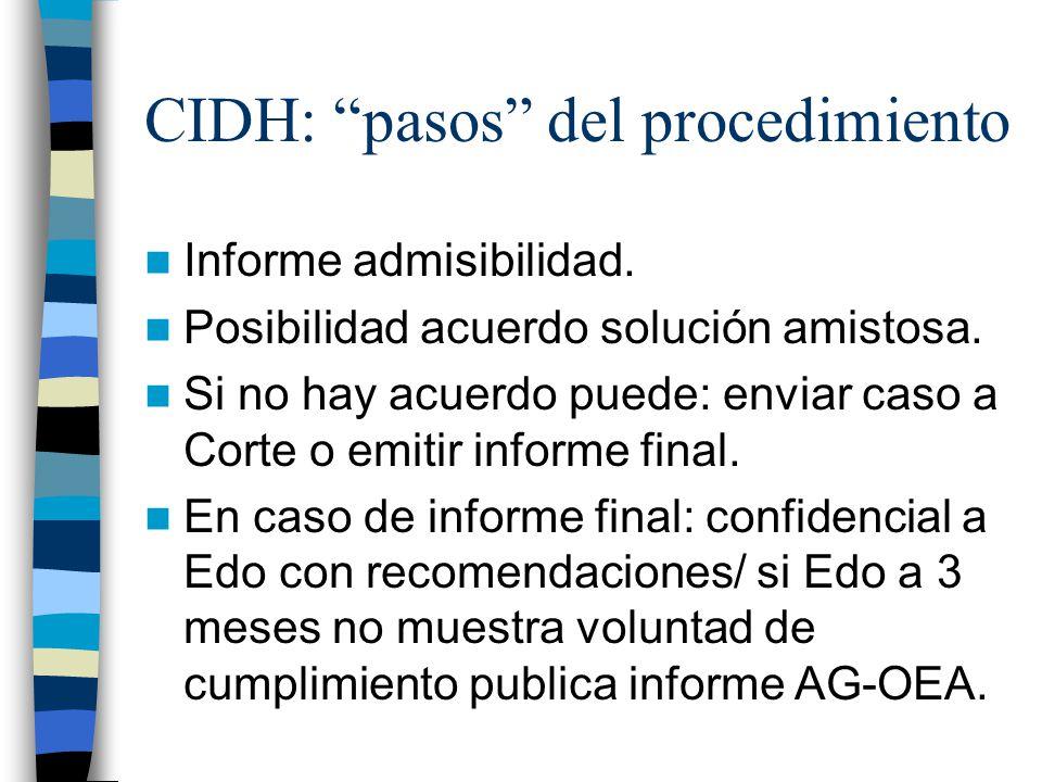 CIDH: pasos del procedimiento