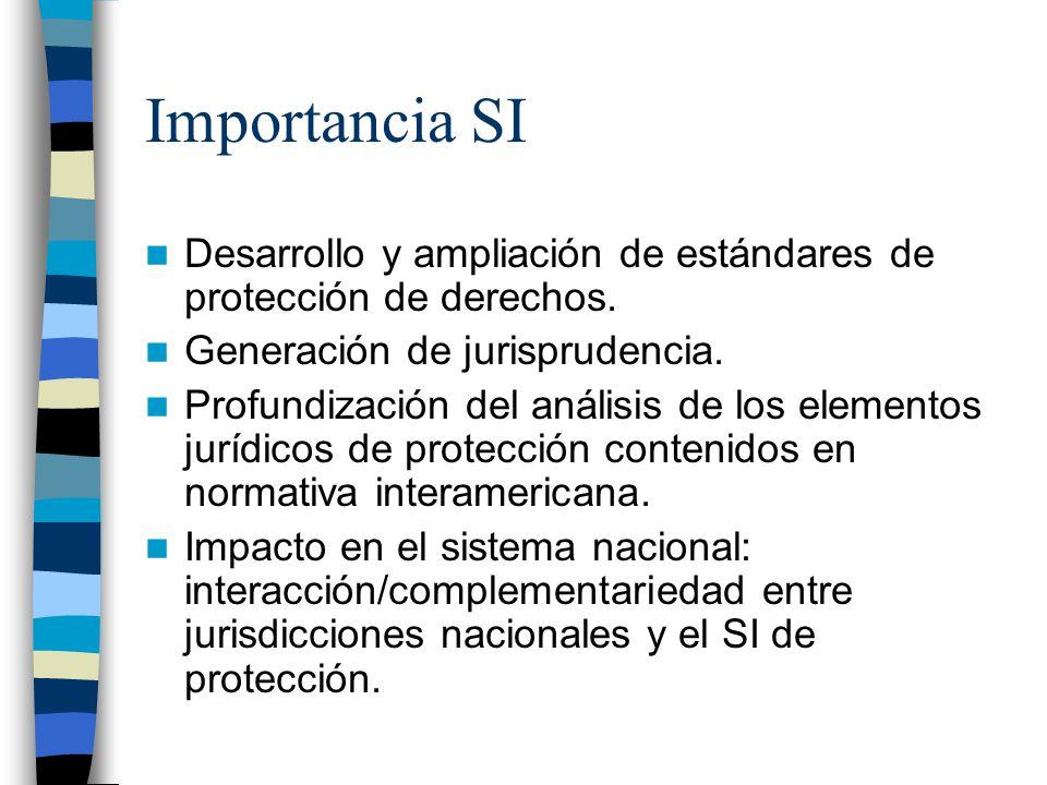 Importancia SI Desarrollo y ampliación de estándares de protección de derechos. Generación de jurisprudencia.