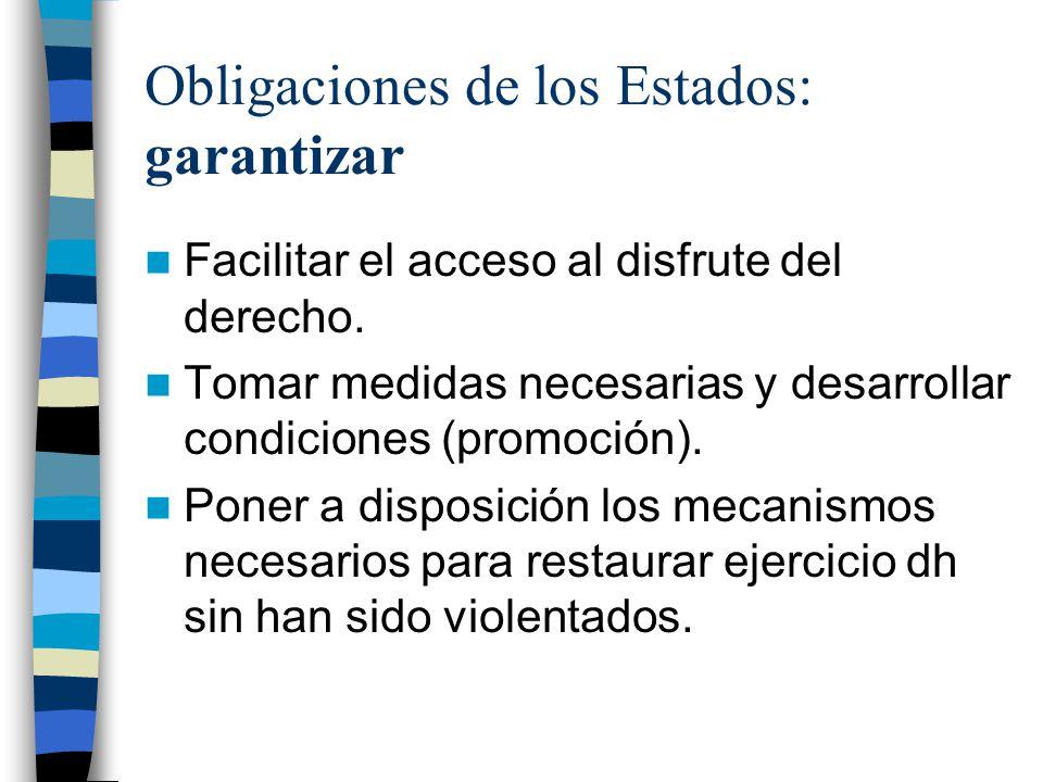 Obligaciones de los Estados: garantizar
