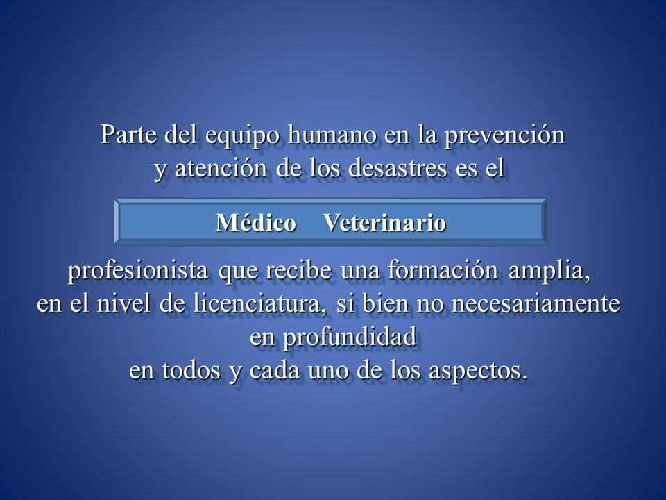 Parte del equipo humano en la prevención