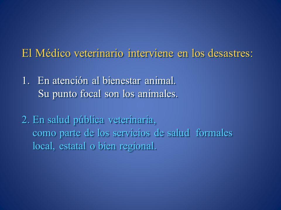 El Médico veterinario interviene en los desastres: