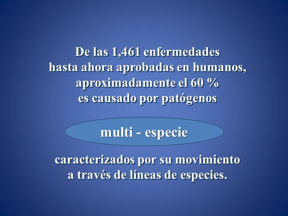multi - especie De las 1,461 enfermedades