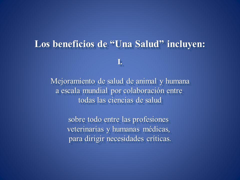 Los beneficios de Una Salud incluyen:
