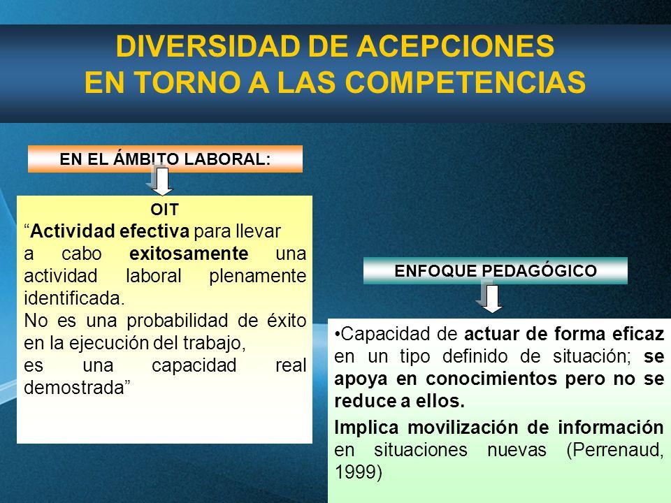 DIVERSIDAD DE ACEPCIONES EN TORNO A LAS COMPETENCIAS