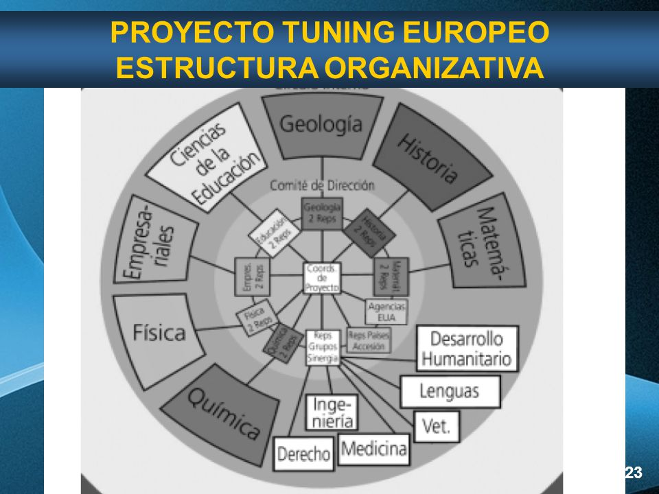 PROYECTO TUNING EUROPEO ESTRUCTURA ORGANIZATIVA