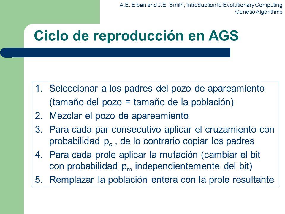 Ciclo de reproducción en AGS